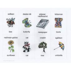 Gaelic and English flashcards  (3-7 years)