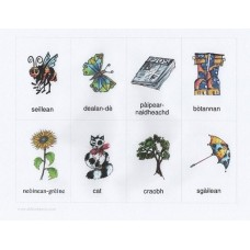 Gaelic flashcards (3-7 years)