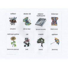 Gaelic flashcards with pronunciation guide (3-7 years)